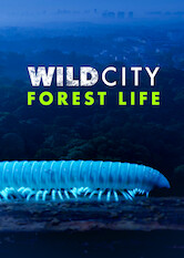 Search netflix Wild City - Forest Life